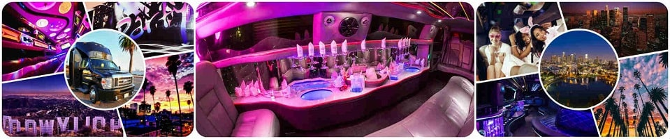 Promo limousine for your party