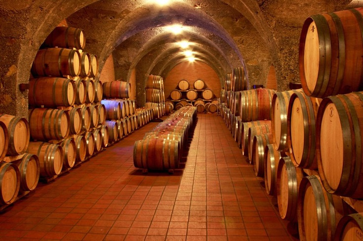 image is showing wine barrels in the cellars