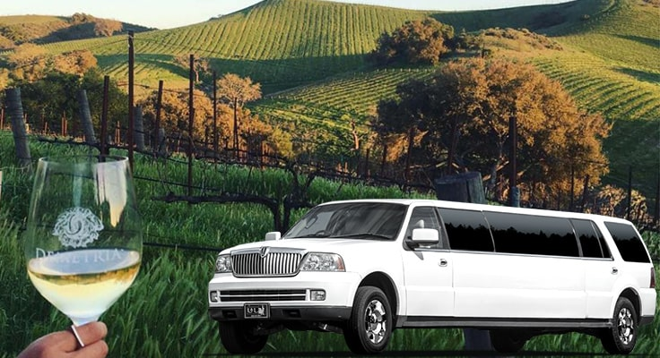 image is showing white limo and valley