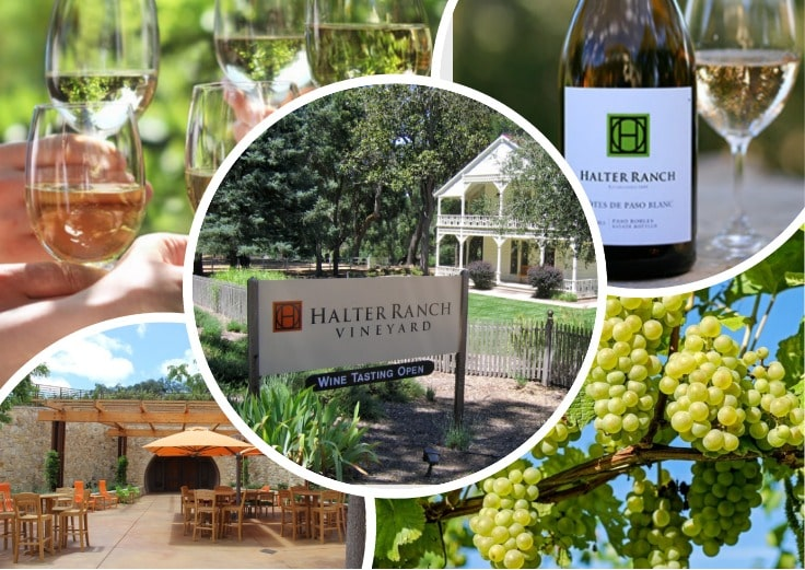 image is showing winery and grape in Halter Ranch Winery, California