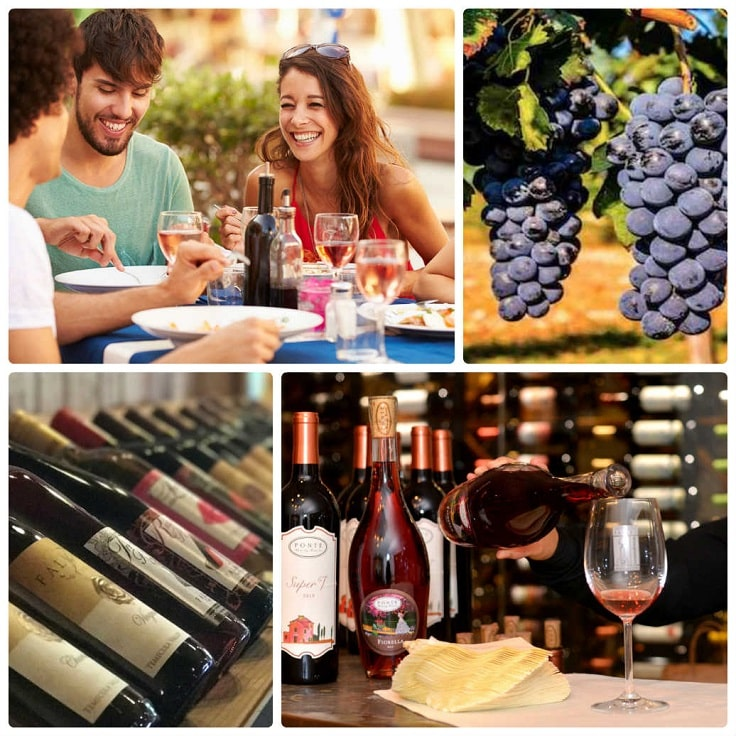image is showing a collage about Temecula Wine Tours