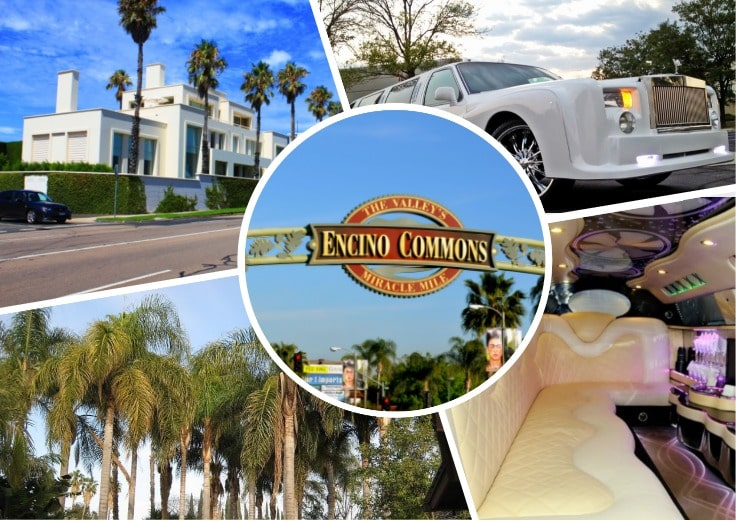 image is showing a collage about encino sign and white limo