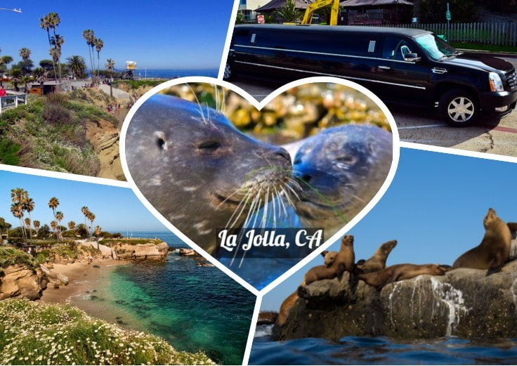image is showing a collage about la jolla beach views, sea lions and black limo