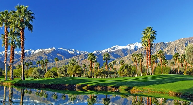 image is showing palm springs view